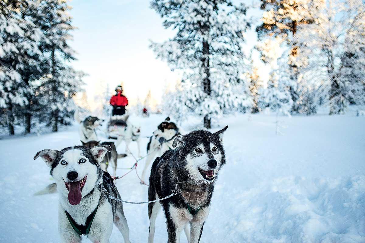 Finlande - Laponie - Ivalo - Séjour avec Activités au Bennett Arctic Club Ivalo 3*